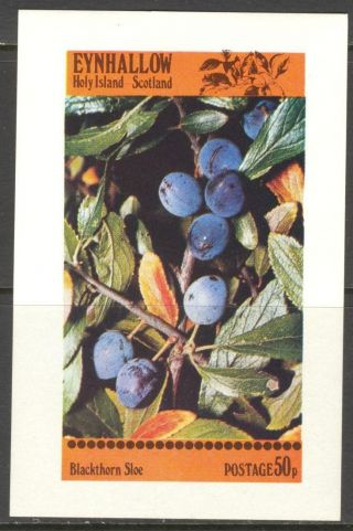 Eynhallow (br.  Local) 1982 Fruits Berries Blackthorn Sloe S/s 2£ Ne118 photo