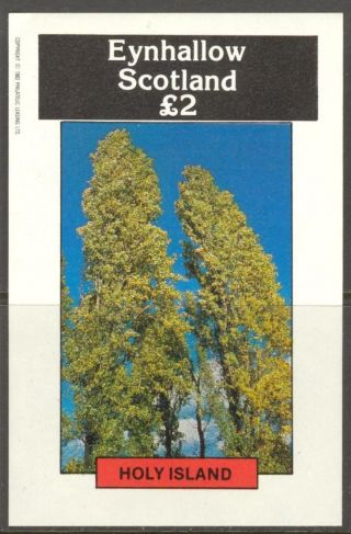Eynhallow (br.  Local) 1982 Trees Iii S/s 2£ Ne073 photo