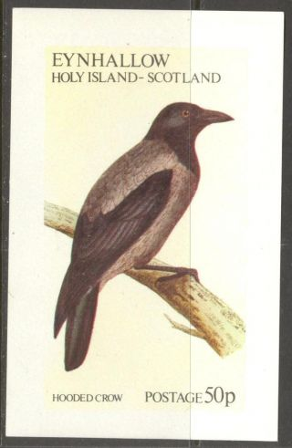 Eynhallow (br.  Local) 1982 Birds Ii Hooded Crow S/s 0,  5£ Ne106 photo