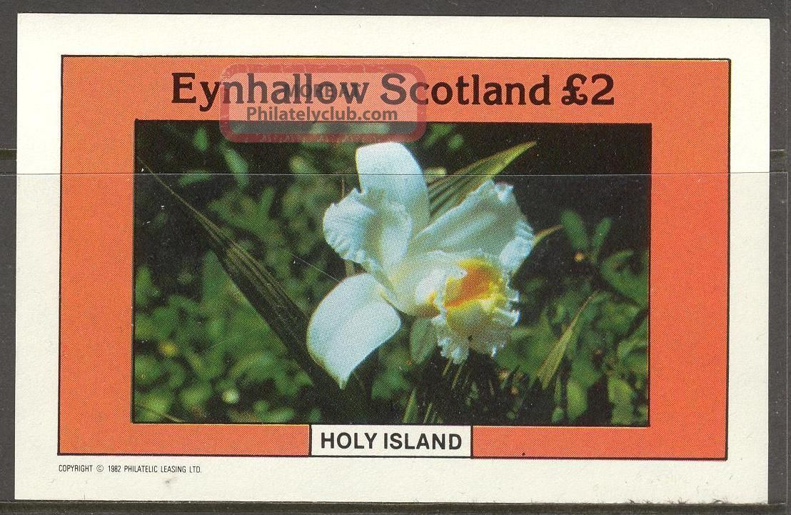 Eynhallow (br.  Local) 1982 Flowers Ii S/s 2£ Ne094 Specialty Philately photo