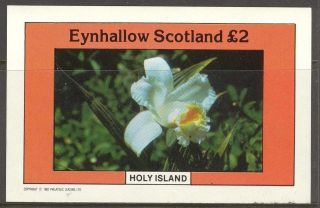 Eynhallow (br.  Local) 1982 Flowers Ii S/s 2£ Ne094 photo