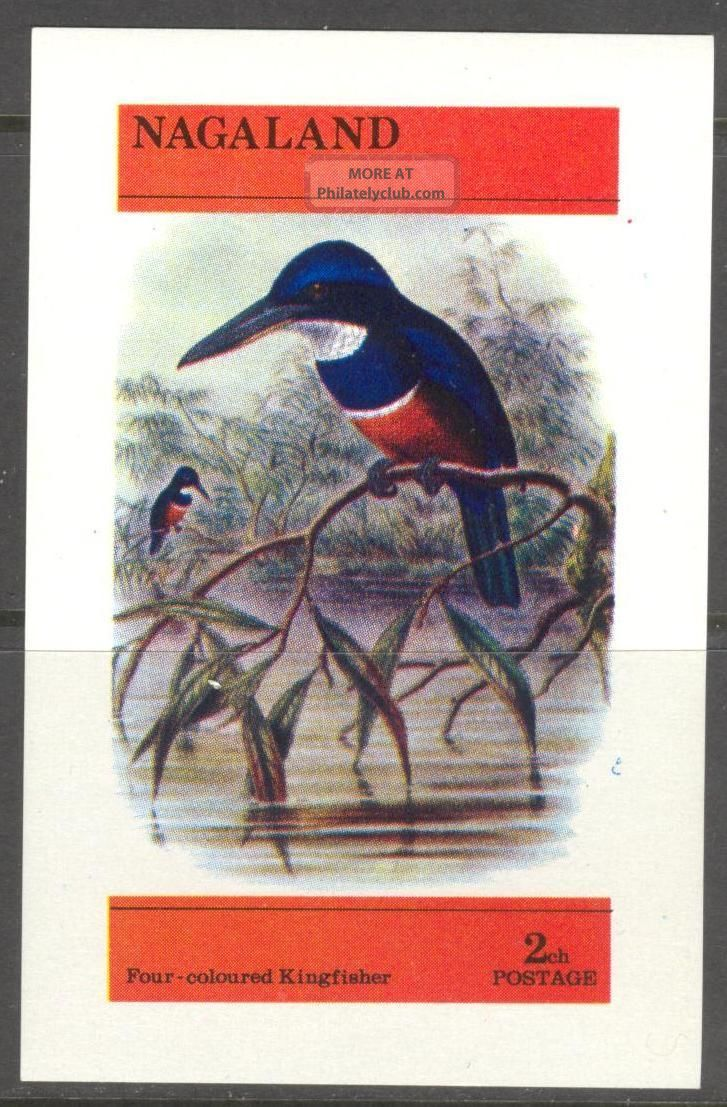 Nagaland 1972 Birds I Kingfisher S/s Nn009 Specialty Philately photo