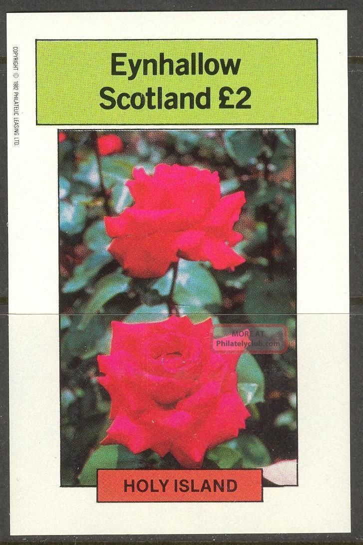 Eynhallow (br.  Local) 1982 Flowers Vii Roses S/s 2£ Ne099 Specialty Philately photo