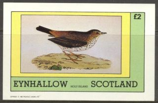 Eynhallow (br.  Local) 1982 Birds Iii S/s 2£ Ne107 photo