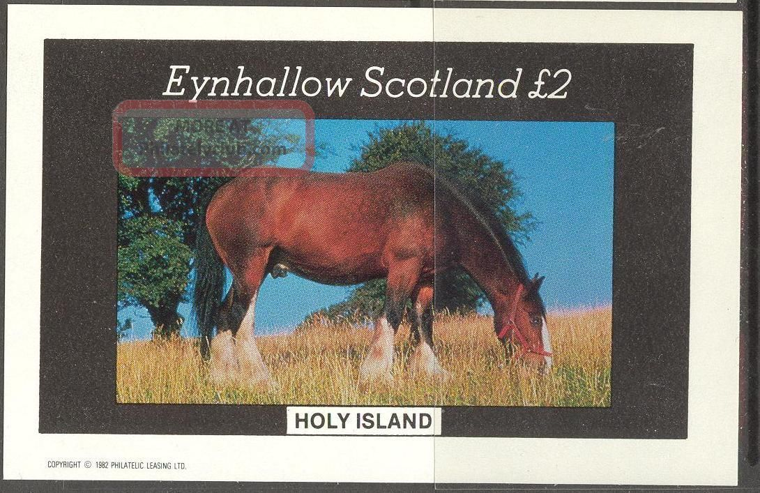Eynhallow (br.  Local) 1982 Horses S/s 2£ Ne078 Specialty Philately photo