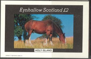 Eynhallow (br.  Local) 1982 Horses S/s 2£ Ne078 photo