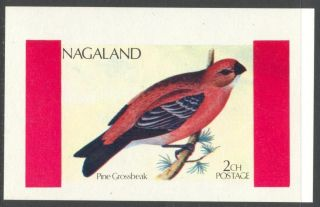 Nagaland 1972 Birds Ii Pine Grossbeak S/s Nn010 photo