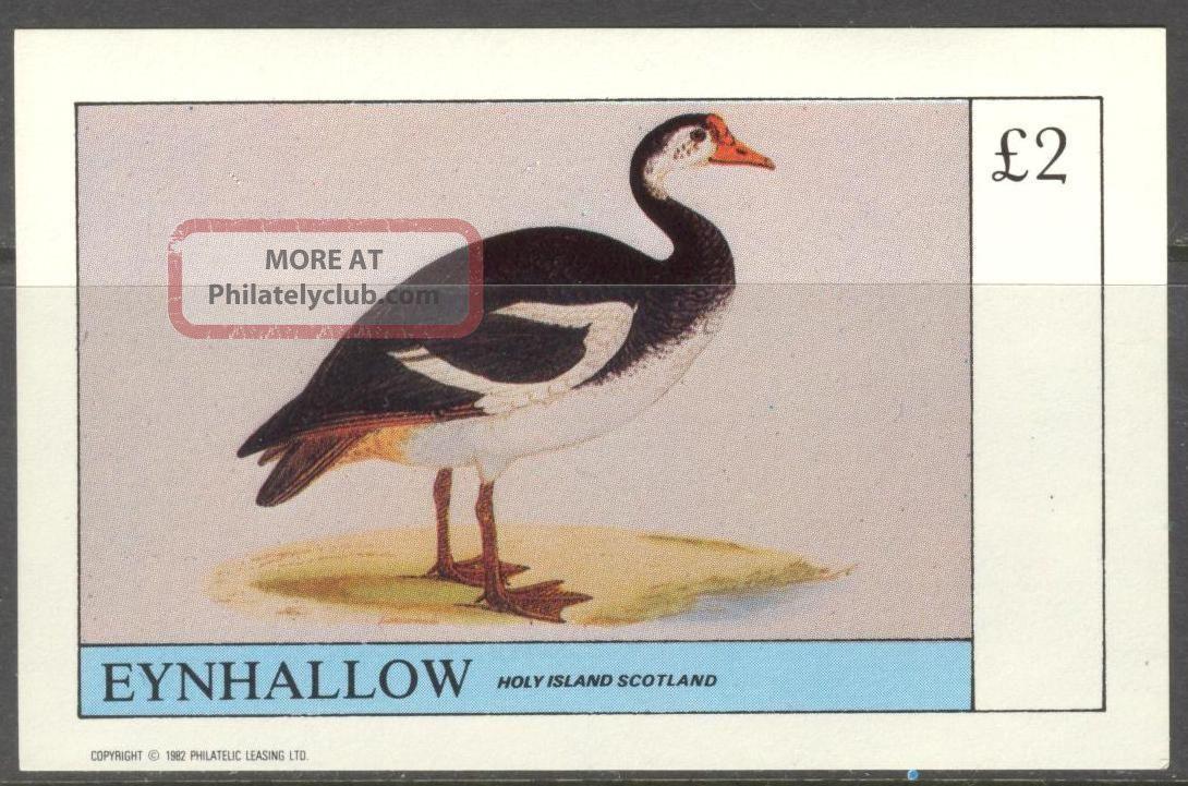 Eynhallow (br.  Local) 1982 Birds Vii S/s 2£ Ne111 Specialty Philately photo