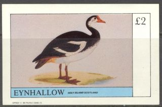 Eynhallow (br.  Local) 1982 Birds Vii S/s 2£ Ne111 photo