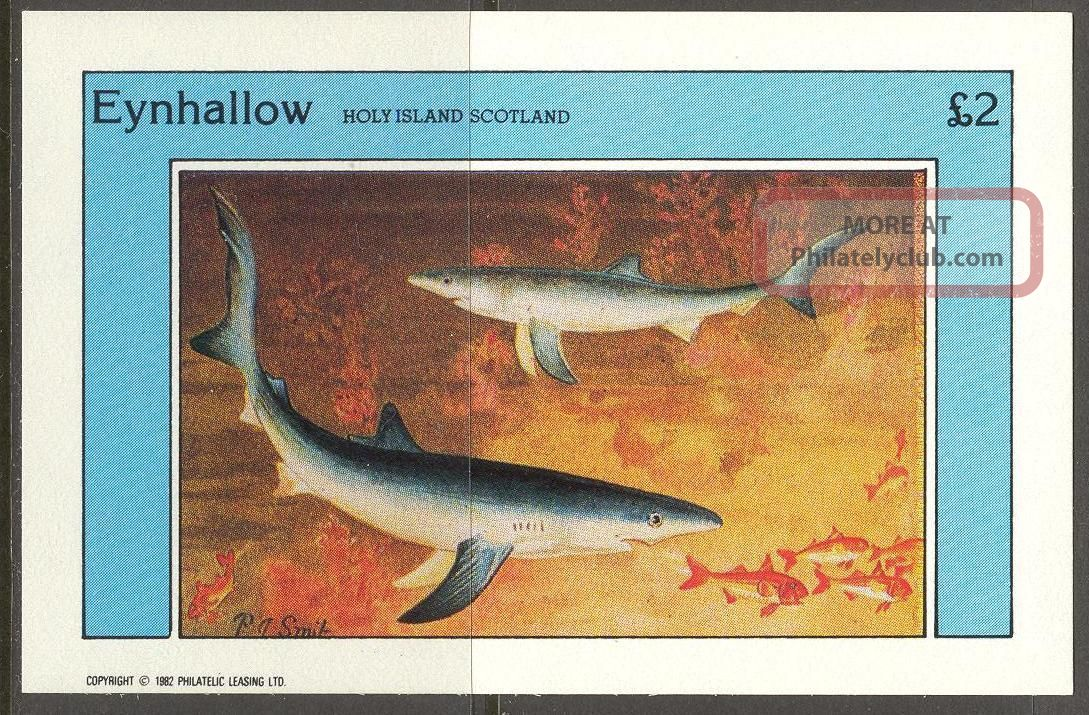Eynhallow (br.  Local) 1982 Fishes Sharks S/s 2£ Ne079 Specialty Philately photo