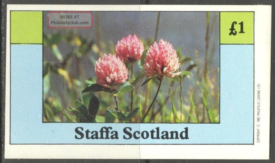 Staffa (br.  Local) 1982 Flowers Vii S/s 1£ Ns030 Specialty Philately photo