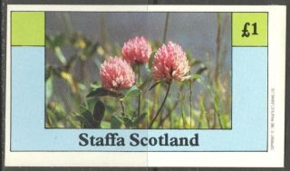 Staffa (br.  Local) 1982 Flowers Vii S/s 1£ Ns030 photo