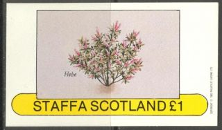 Staffa (br.  Local) 1982 Flowers Iv Hebe S/s 1£ Ns027 photo