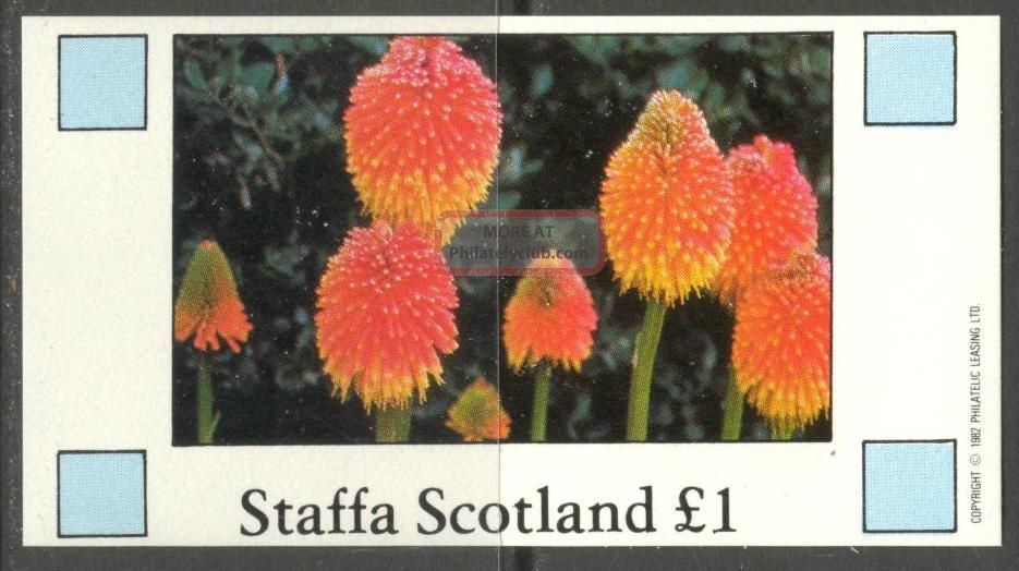 Staffa (br.  Local) 1982 Flowers V S/s 1£ Ns028 Specialty Philately photo
