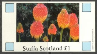 Staffa (br.  Local) 1982 Flowers V S/s 1£ Ns028 photo