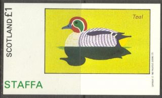 Staffa (br.  Local) 1982 Birds Viii Duck Teal S/s 1£ Ns053 photo