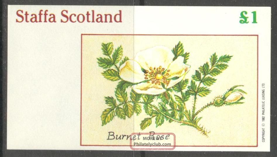 Staffa (br.  Local) 1982 Flowers Ii Burnet Rose S/s 1£ Ns025 Specialty Philately photo