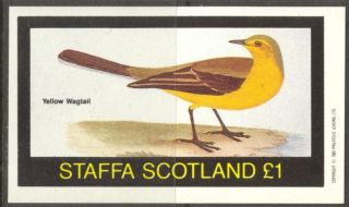Staffa (br.  Local) 1982 Birds V Yellow Wagtall S/s 1£ Ns050 photo