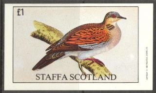 Staffa (br.  Local) 1982 Birds I S/s 1£ Ns046 photo