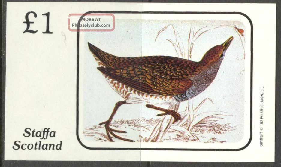 Staffa (br.  Local) 1982 Birds Ii S/s 1£ Ns047 Specialty Philately photo