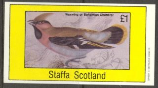 Staffa (br.  Local) 1982 Birds Xi Chatterers/s 1£ Ns056 photo