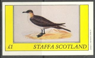 Staffa (br.  Local) 1982 Birds Xxv S/s 1£ Ns070 photo