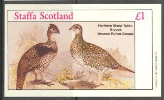 Staffa (br.  Local) 1982 Birds Xxiii Grouse S/s 1£ Ns068 photo