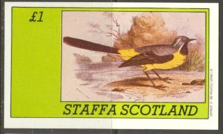 Staffa (br.  Local) 1982 Birds Xviii S/s 1£ Ns063 photo