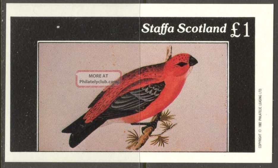 Staffa (br.  Local) 1982 Birds Xvii S/s 1£ Ns062 Specialty Philately photo