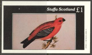 Staffa (br.  Local) 1982 Birds Xvii S/s 1£ Ns062 photo