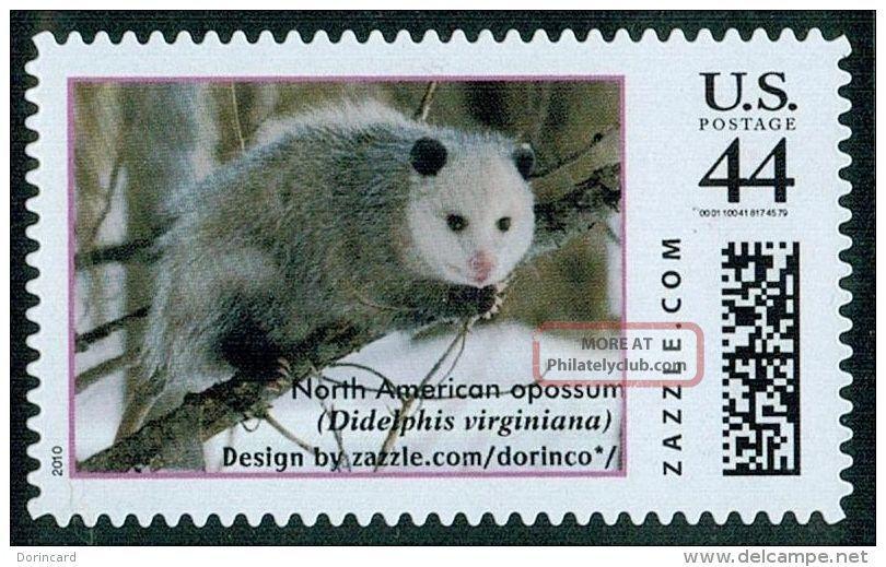 Virginia Opossum (didelphis Virginiana),  Zazzle Stamp/personalized Personalised Animal Kingdom photo