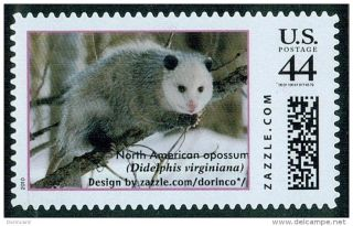 Virginia Opossum (didelphis Virginiana),  Zazzle Stamp/personalized Personalised photo
