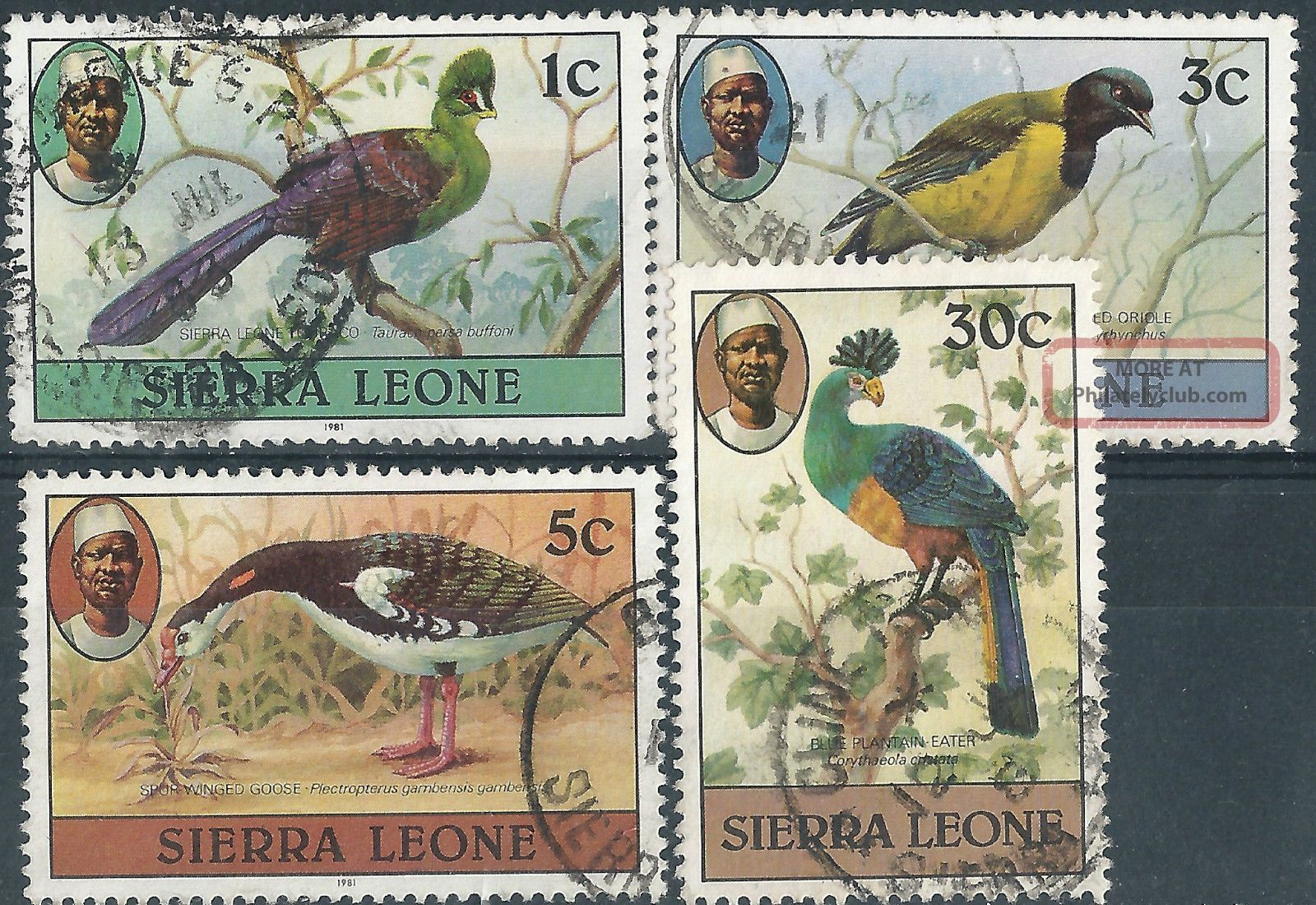 (3915) Sierra Leone.  1980. .  Birds. Africa photo